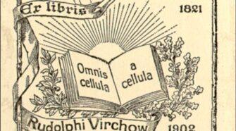rudolf virchow cellular